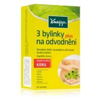 Kneipp 3 bylinky na odvodnění 60ks eshop